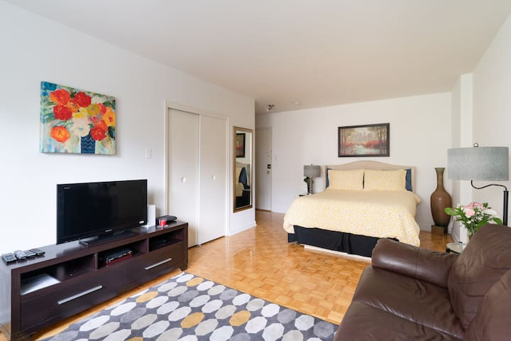 Large Studio Apt. available in down townToronto