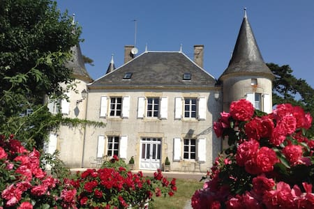 1 B&B Double  in a Château (1) - Le Chillou - Bed & Breakfast