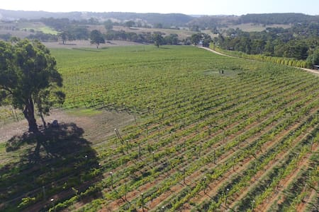 Adelaide Hills vineyard studios - Macclesfield - Other