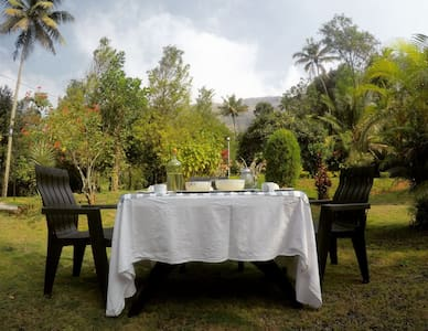 Experience the freshness of nature:- Calm Shack