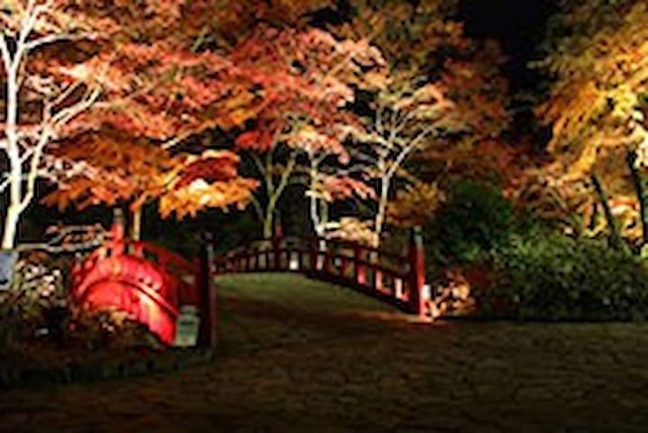 和の別荘(楓:kaede):Atami Japanesetraditional house