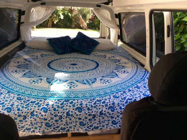 Dolphin Dreaming Van - Byron Bay - Bobil