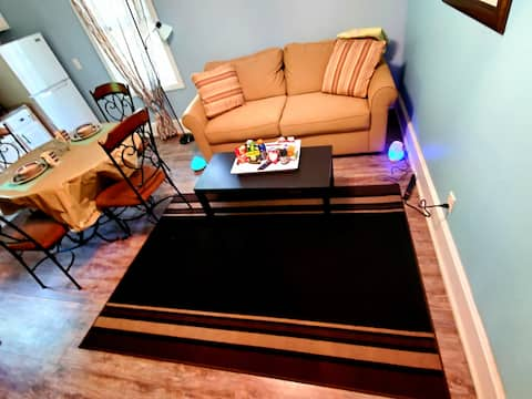 1BedRoom StronglyDisinfected & Spacious Apt dwntn!
