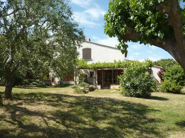 ** FERME DU MOULIN ROUX, appartement Roumégou  ** - Ramatuelle - Appartement