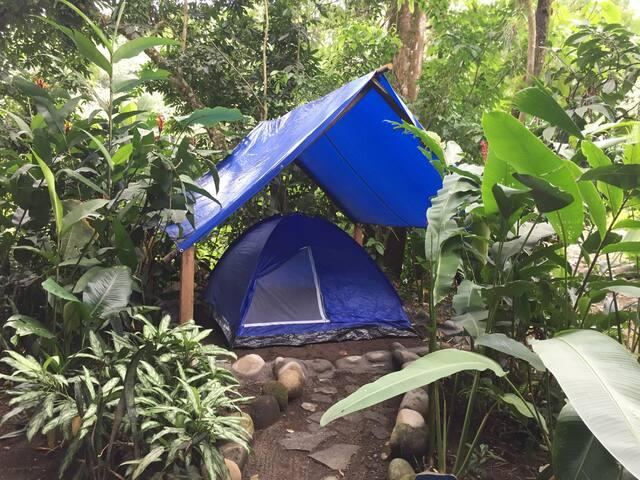 Costa Rica Camping Lodge