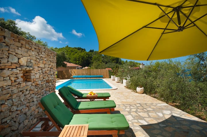 VILLA Goga 1, with swimming pool - Vela Luka - Villa