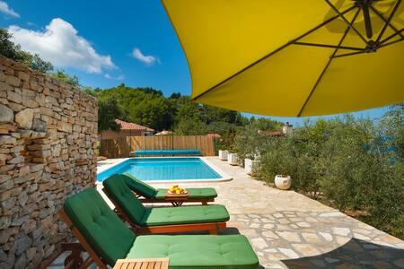 VILLA Goga 1, with swimming pool - Vela Luka - Villa