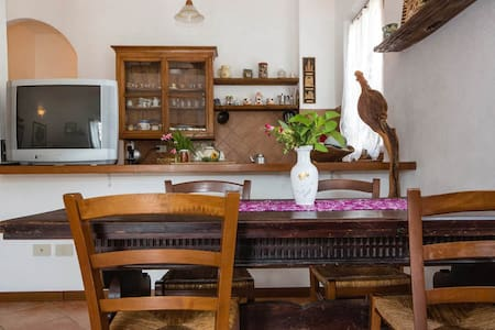 Silence and relax in Tuscany - Iesa (Siena) - Apartment