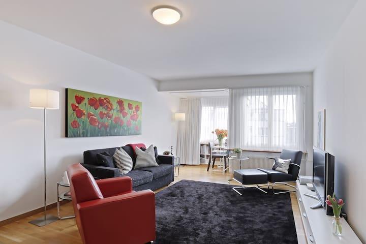 Very bright 2BR apartment (Baur)