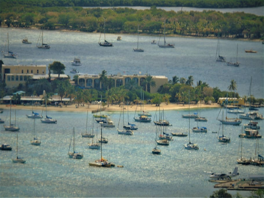 Watch sailboats in the harbour