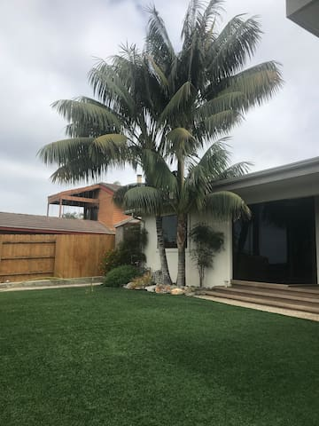 The palms in front of the house got a lot bigger since I started hosting for Airbnb