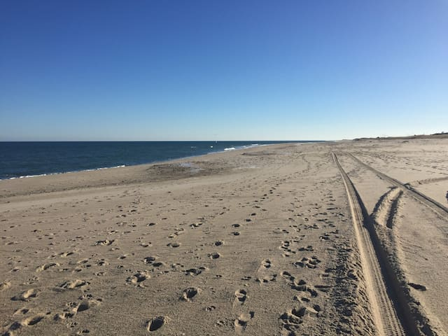 Beautiful Nauset Beach is under a mile from the house.