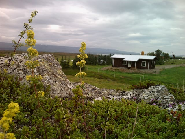 Gíslastaðir - Cottage - East Iceland