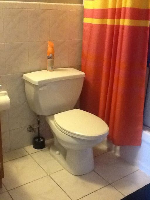 Pirvate Bathroom.Includes Sink,Toilet,Shower.