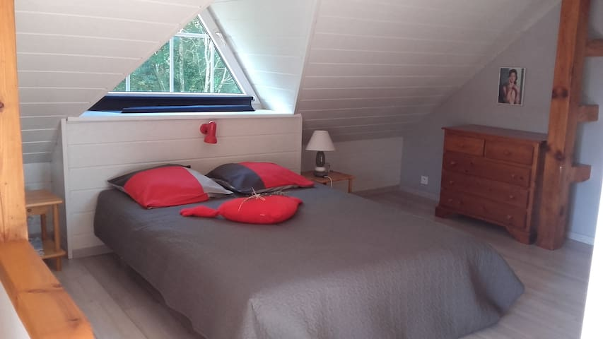 Studio avec terrasse en lisière de forêt
