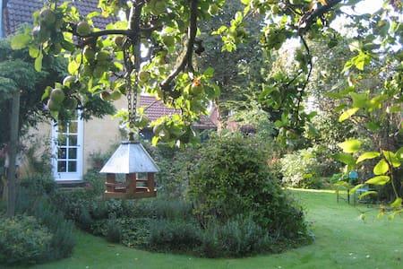 Byhus med Cottage Garden - Soro
