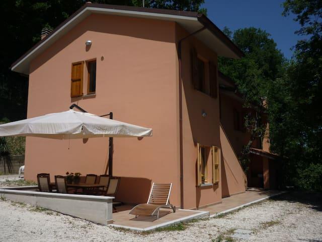 GRANDE ISTRICE - Casine di Paterno, AN - Apartment