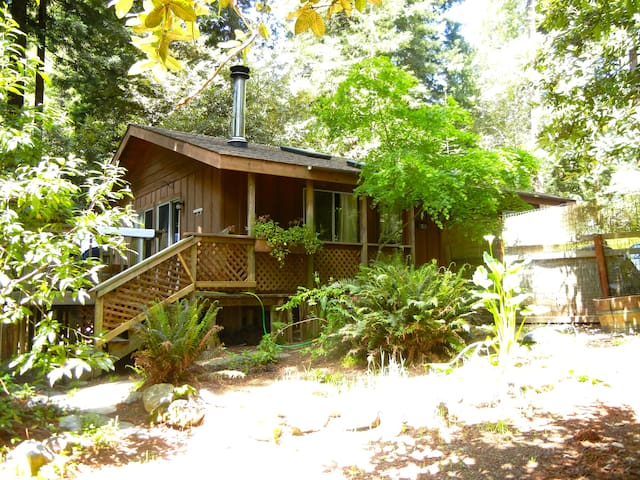 Rustic Cottage in the Redwoods w/ Private Hot Tub