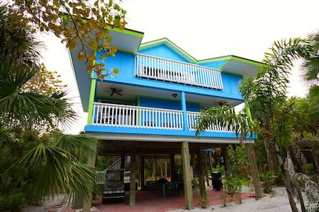 079- Blue Macaw - House