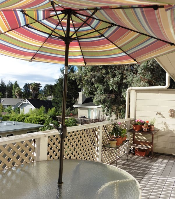 Another view from the patio - open vista - sitting area as well