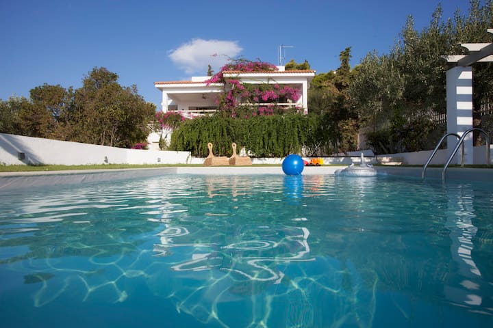 Beautiful  beachfront house - Aghios Emilianos,