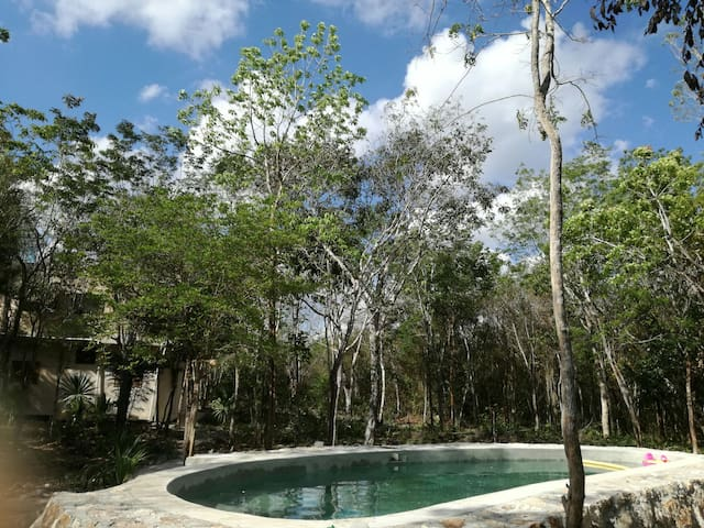 Hidden stay in the Jungle with pool - Tulum - Apartment