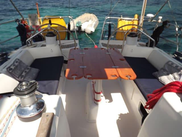 Cabine privative à bord d'un 12m! - LA CIOTAT - Barco