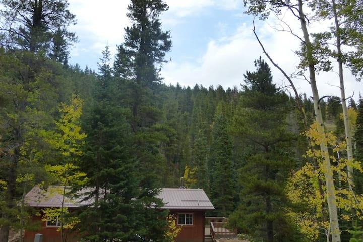 Moon Creek Cabin - A Wonderful Escape!