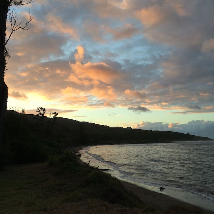 Waihe'e Coastal Dunes and Refuge