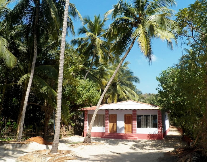 The Coconut Palms