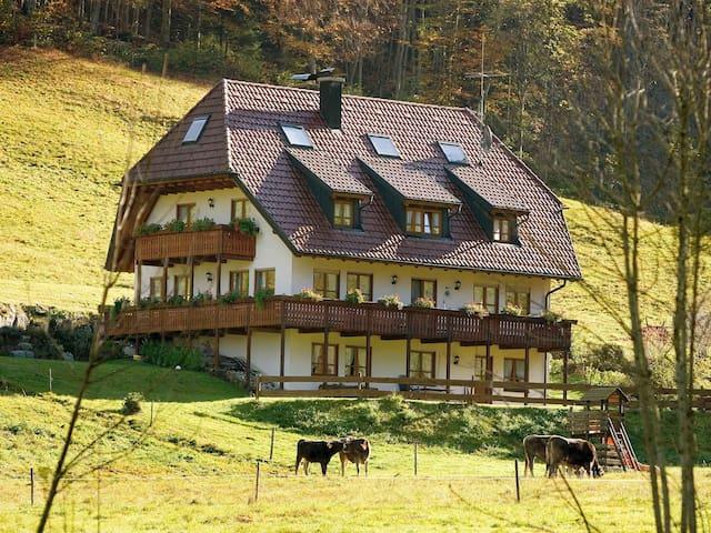 Gasthaus zur Linde-Napf, (Oberried-St. Wilhelm), Ferienwohnung Morgensonne mit 48 qm, 1 Schlafzimmer für max. 2 Personen