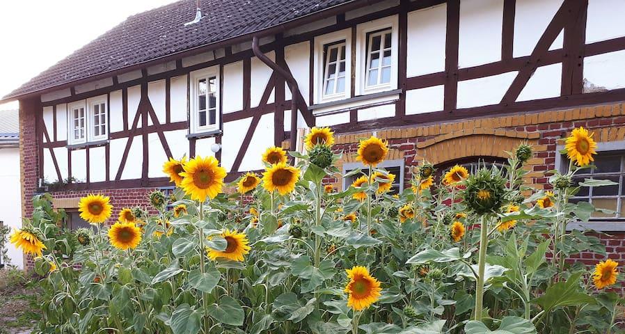 Haus Helene, Oberirsen, direkt am Westerwaldsteig