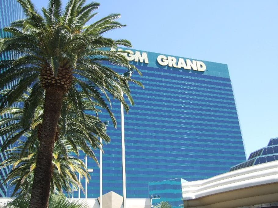 View of MGM from Signature Pool...