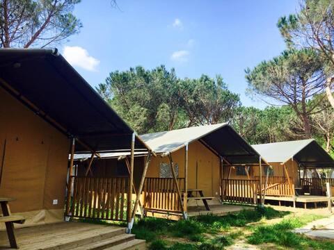 Glamping Camping in Umbria - Safari Lodge Tent