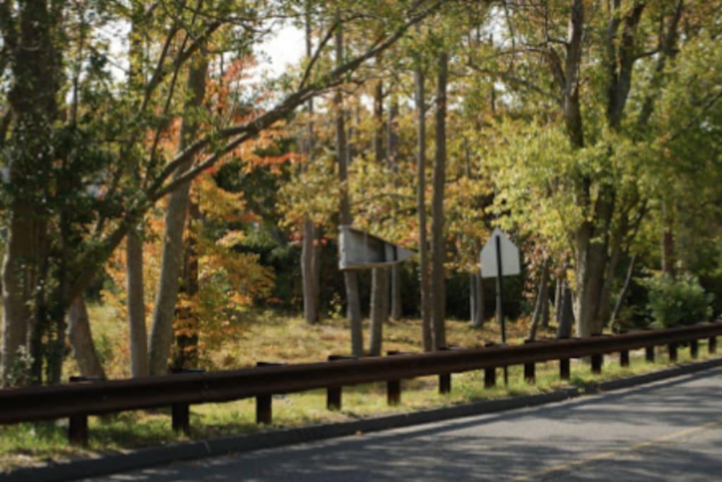 Trails for hiking, biking, Fall foliage