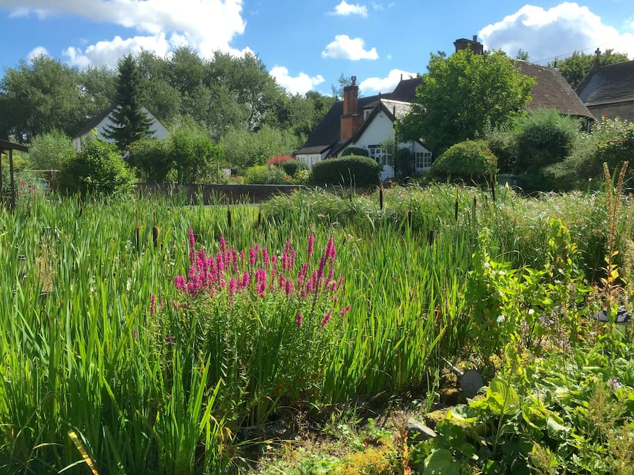 Lovely mature gardens on edge of small rural village