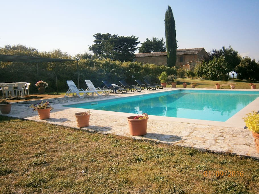 View of the pool and home
