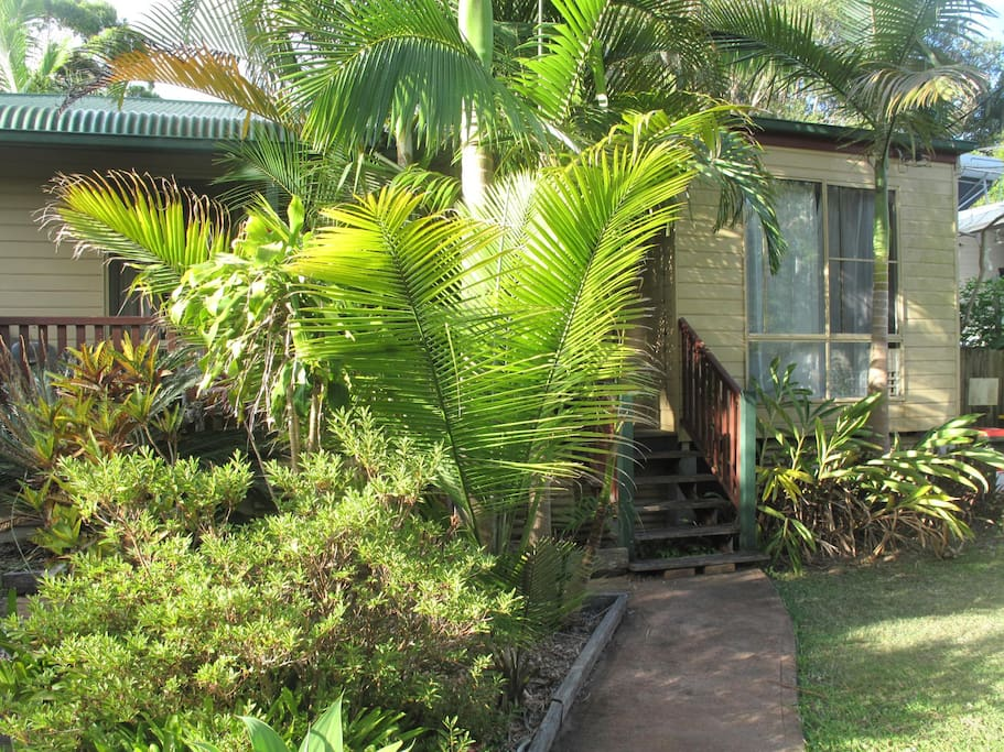 Our quiet abode, newly renovated (photo coming), nestled amongst tropical and native gardens.