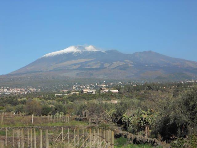 Etna Room's - Belpasso
