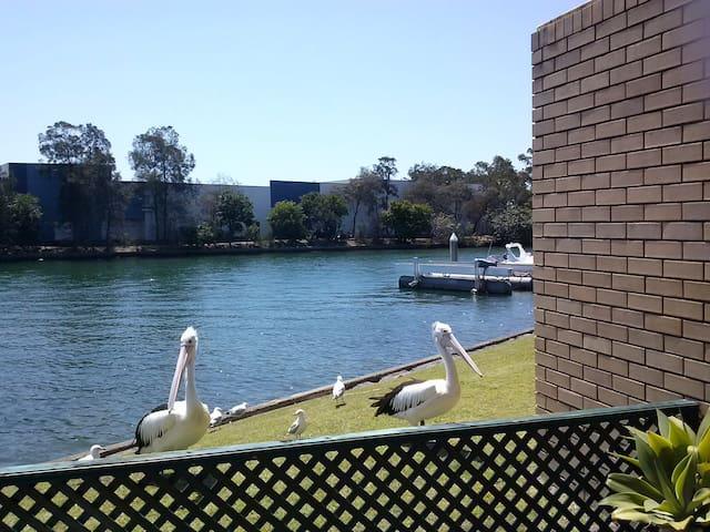 Tranquill, Waterfront, Gold Coast. - Runaway Bay