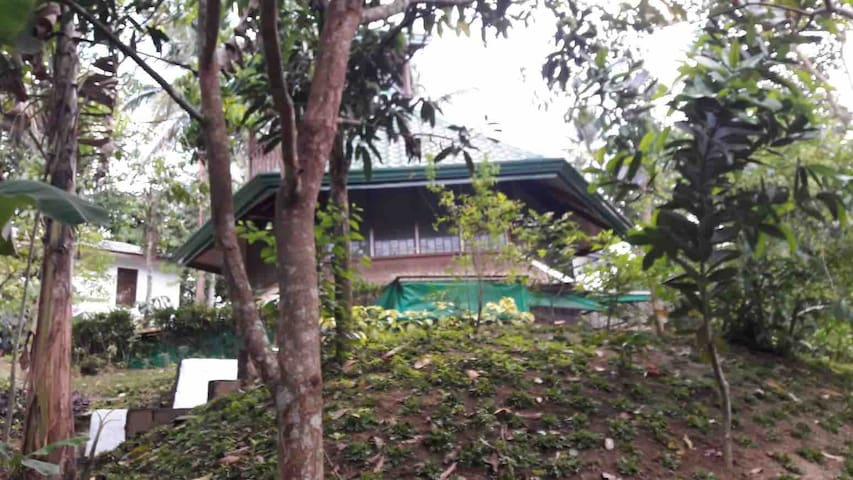 Big mountainview room & campsite near Mt. Maculot
