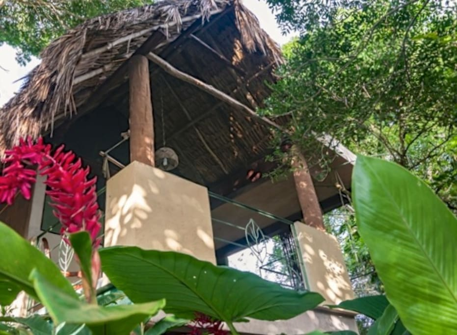 Birdhouse catches natural breezes and is perched with a view of the treetops.  A private outdoor shower with solar heated water and dehydrating compost toilet make this our favorite eco-suite.