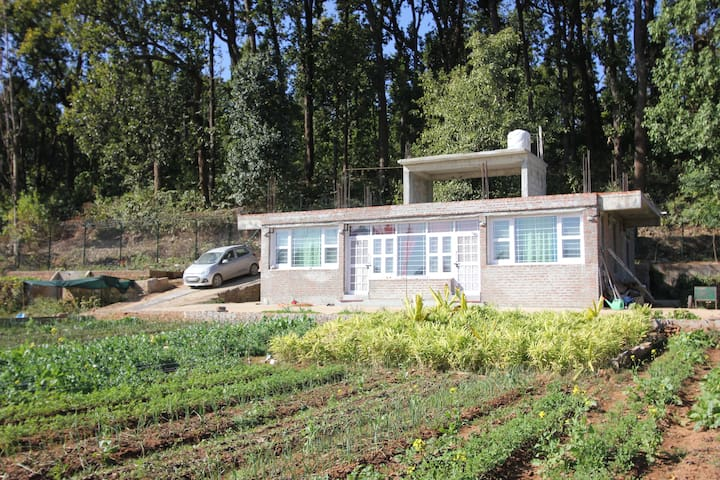 Forest Side Farm