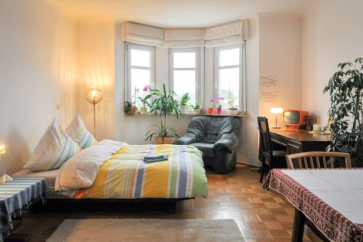 Gemütlich in einer Villa :) 25 qm - เฮลิบรอนน์ - อพาร์ทเมนท์