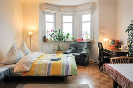 Gemütlich in einer Villa :) 25 qm - Хайльбронн - Квартира