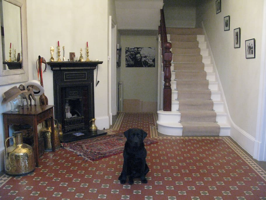 This is our entrance hall (and our dog Tarka)