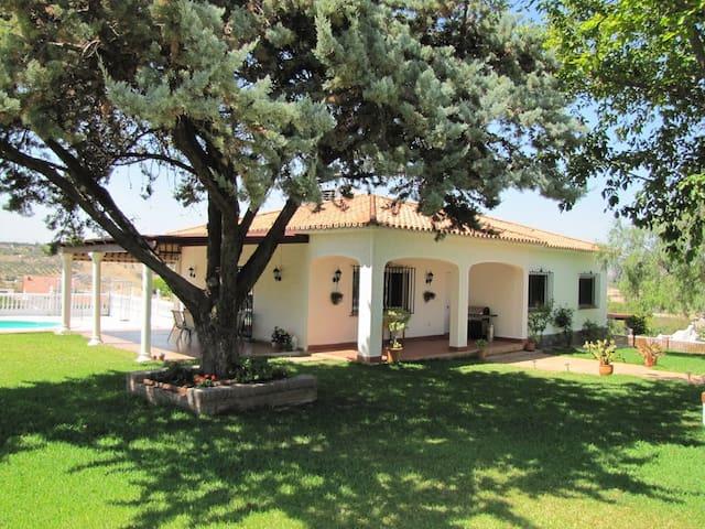 Lovely 4Bed Villa with private pool - Alhaurin de la Torre, Malaga - Villa