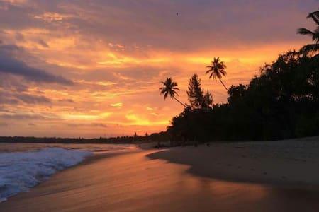 Yala safari and accommodation - Kirinda, tissamaharama  - Bed & Breakfast