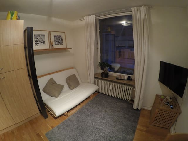 Lovely double sofa bed in centre - Luxembourg - 아파트