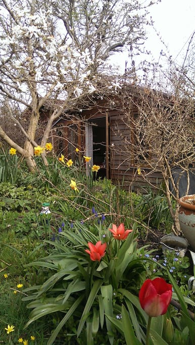 The Bothy